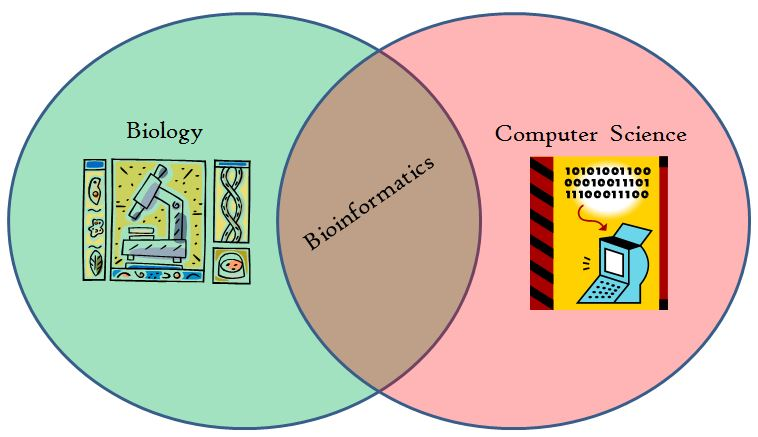Biotech bioinformatics venn diagram shows the overlap of two well established sciences to form a new field of ccuart Choice Image