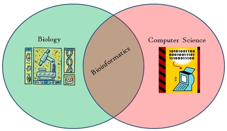 Draw Venn Diagram Bioinformatics Block And Schematic Diagrams