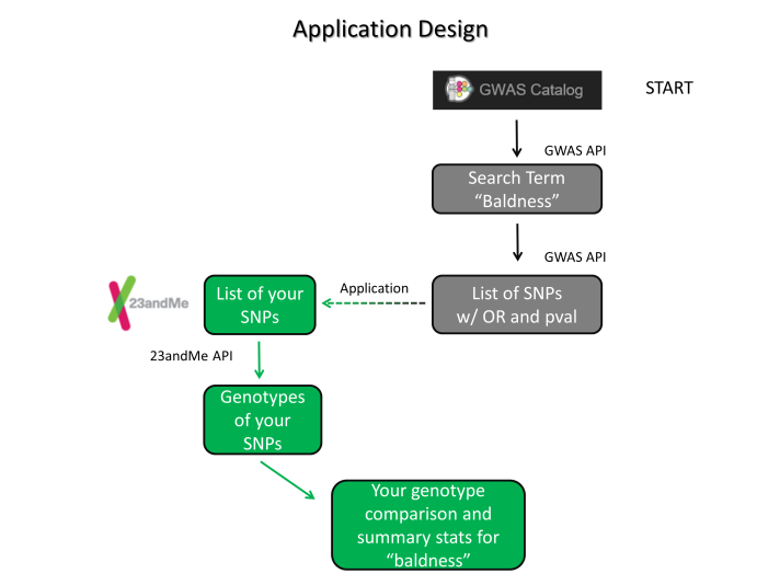 Workflow of the application