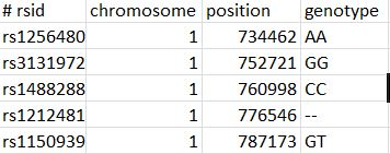 First few snps from my 23andMe raw result file.